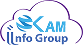 KAM Info Group Inc. Logo